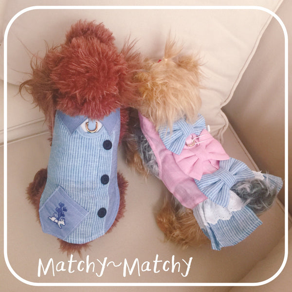 Happy Blue Day Dog&Cat Harness - GLITTER POOCH DOG & CAT HARNESS