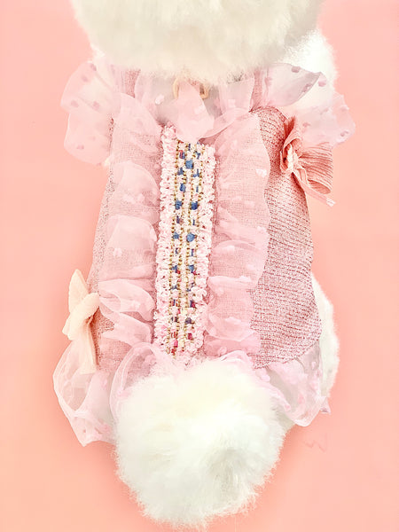 SWEETIE  TWEETIES DOG & CAT HARNESS DRESS - GLITTER POOCH DOG & CAT HARNESS