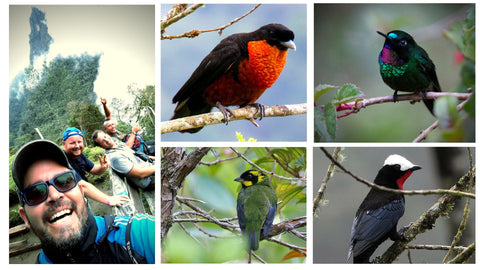 Coffee Region / Birding Colombia (8-day trip from Cali / Price in USD$)