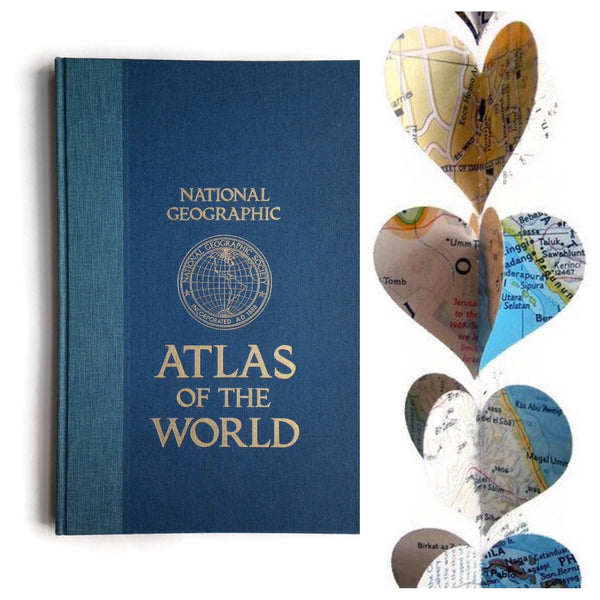 Extra Long Nat Geo Paper Heart Garland - Case Pack of 10 - Wholesale