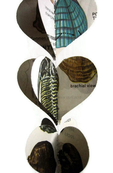 Fossils Heart Garland - Repurposed Vintage Field Guide