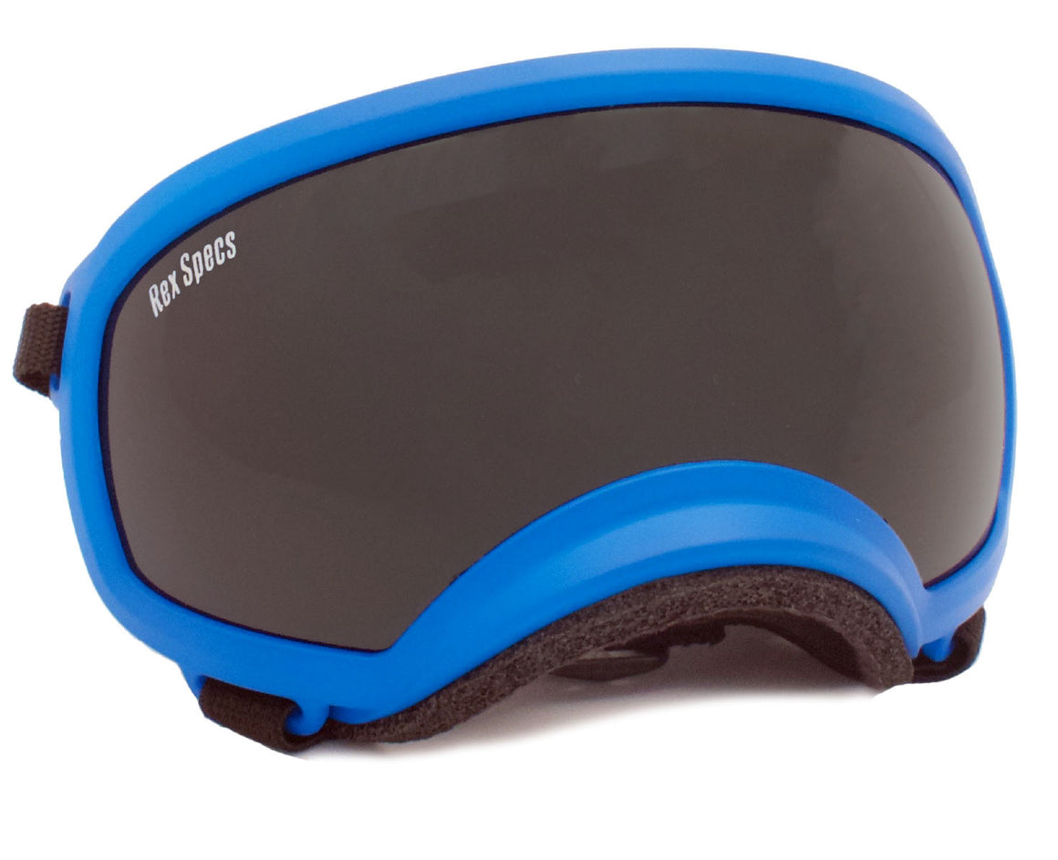 Rex Specs Dog Goggles Medium - Blue - Black Dog Offroad