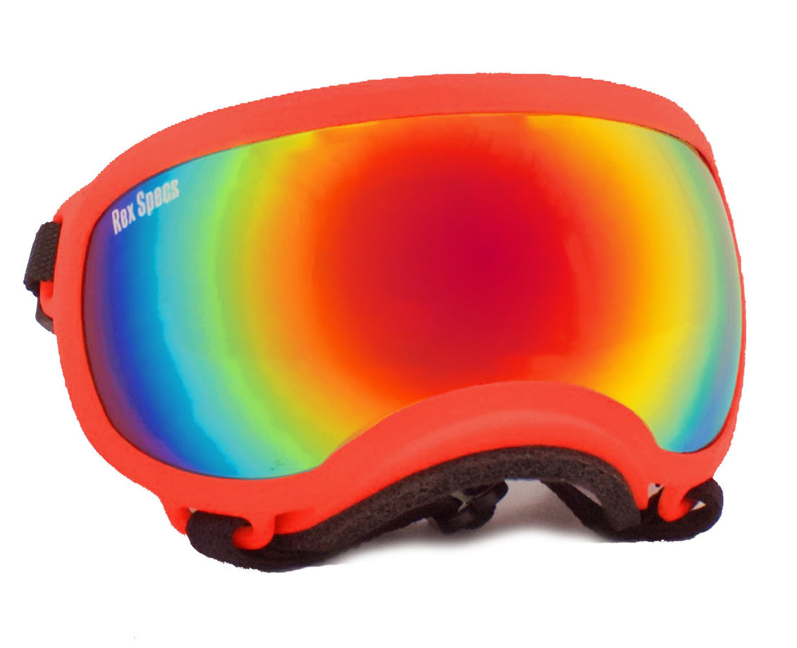 Rex Specs Dog Goggles X-Small - Orange - Black Dog Offroad