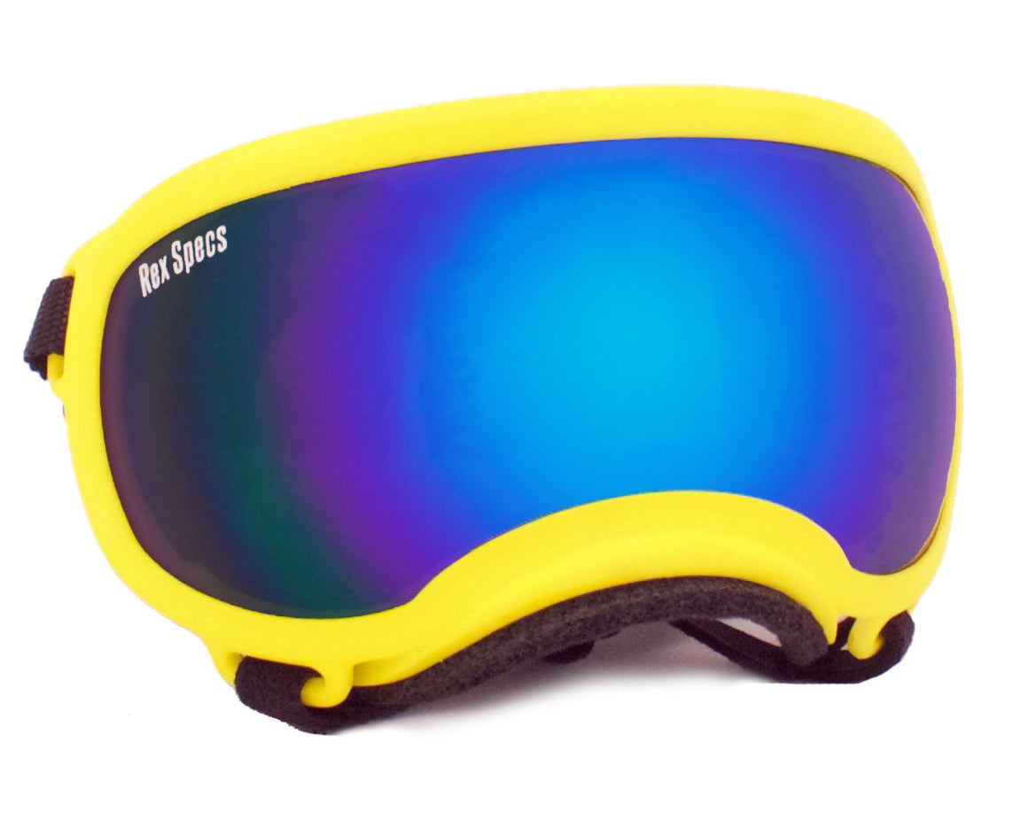 Rex Specs Dog Goggles Small - Yellow - Black Dog Offroad