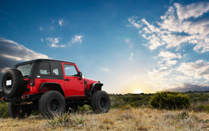 Black Dog Offroad JK 2 Door Hardtop - Black Dog Offroad