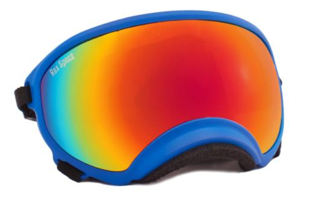 Rex Specs Dog Goggles Large - Cobalt Blue - Black Dog Offroad