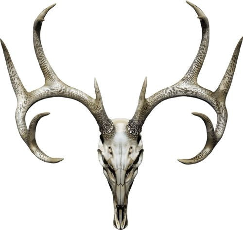 "Buck Skull Hunting Color  Decal 12x11.25"" Boat, Car, Camper, Truck Decal"