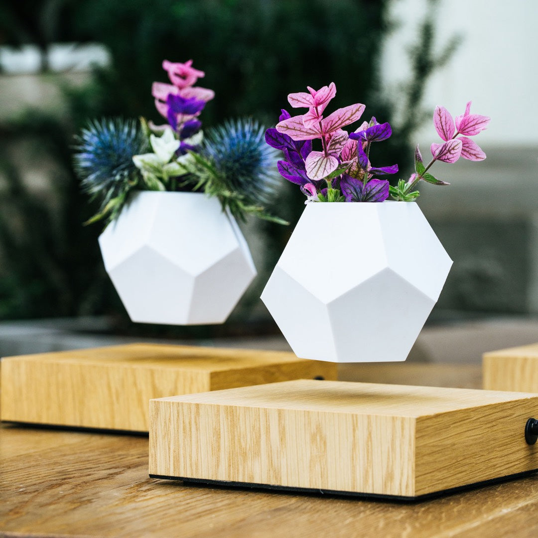 2 levitating planters on a terrace, side view