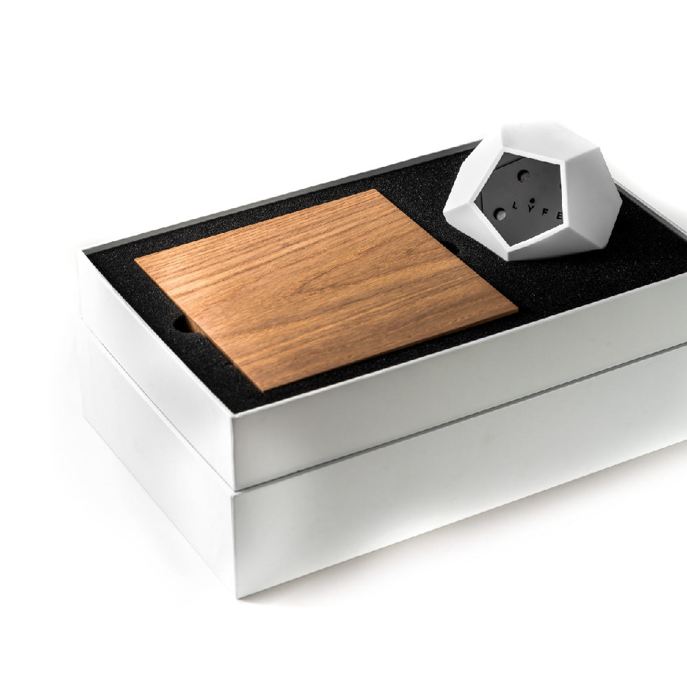 FLYTE levitating planter - LYFE packaging inside