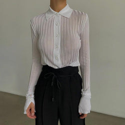 Mesh Sheer Button Up Shirt With Long Sleeves