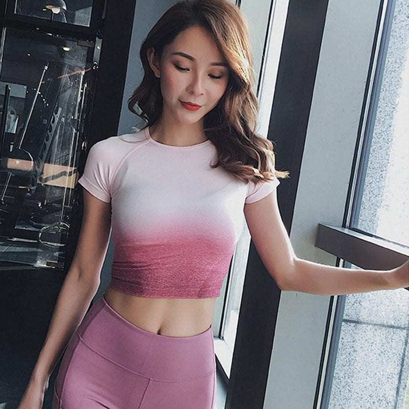 Ombre Seamless Crop Top - Short Sleeve