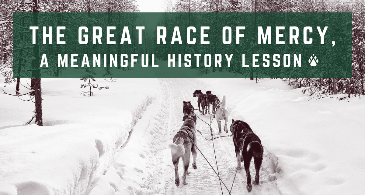 The Great Race of Mercy, A Meaningful History Lesson