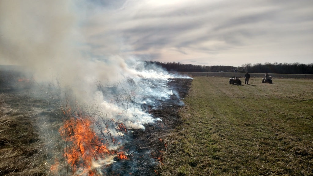Smoke rolling off of the burning field