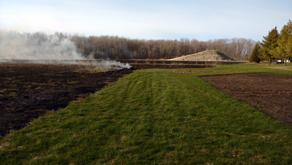 The smoldering remains of a burnt field contrasted with a sharp green lawn
