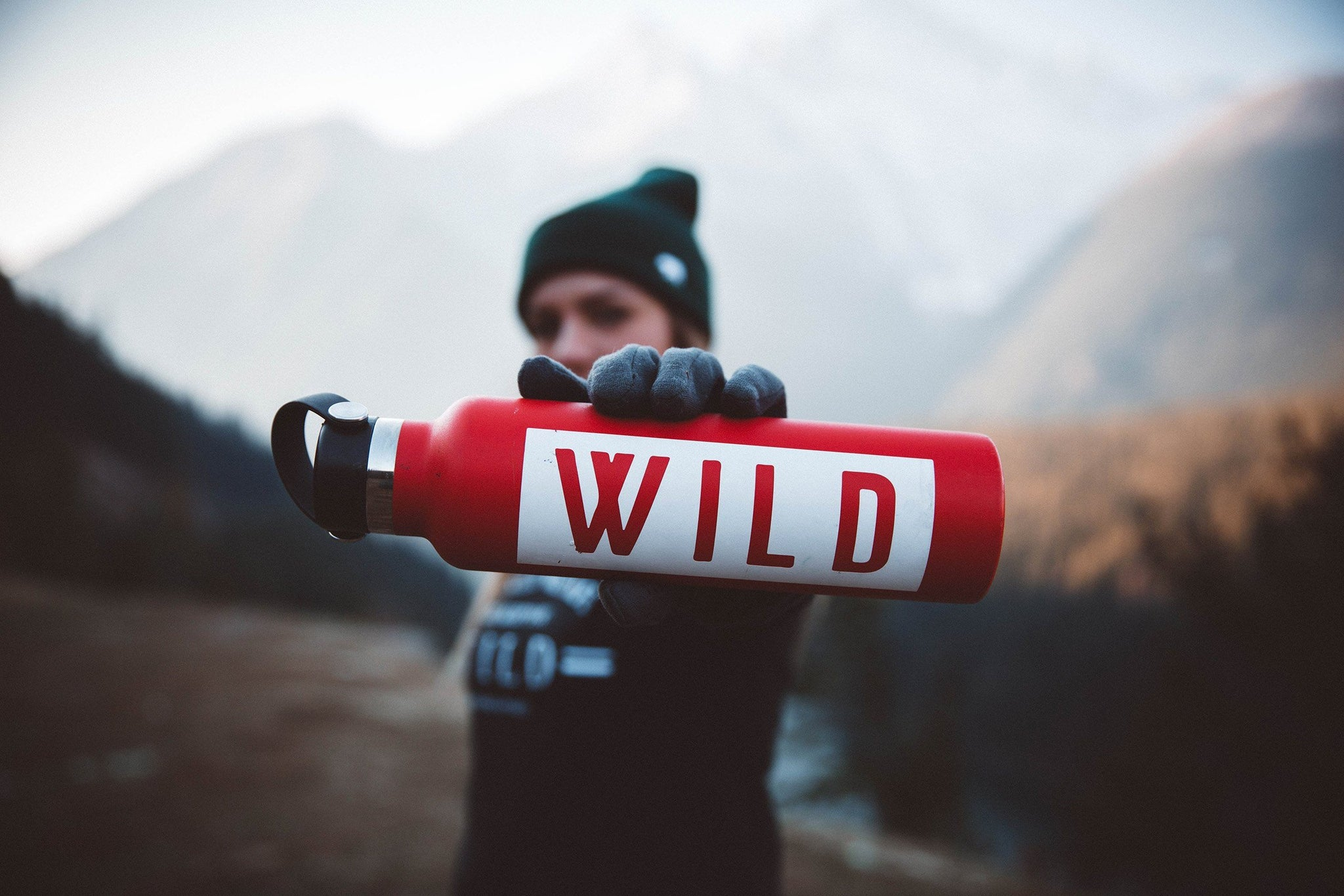 The Parks WILD Decal - The Parks Apparel