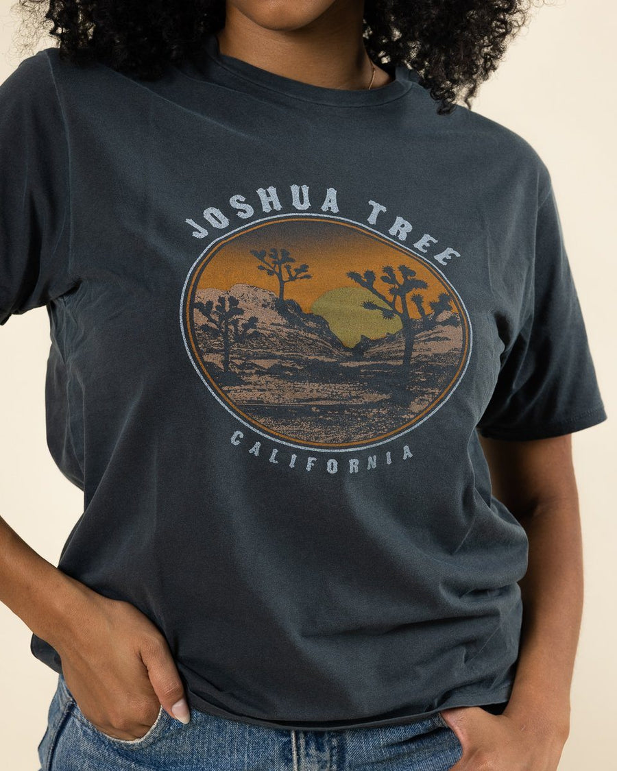 Joshua Tree Distressed Tee - Wondery, A Parks Apparel Brand