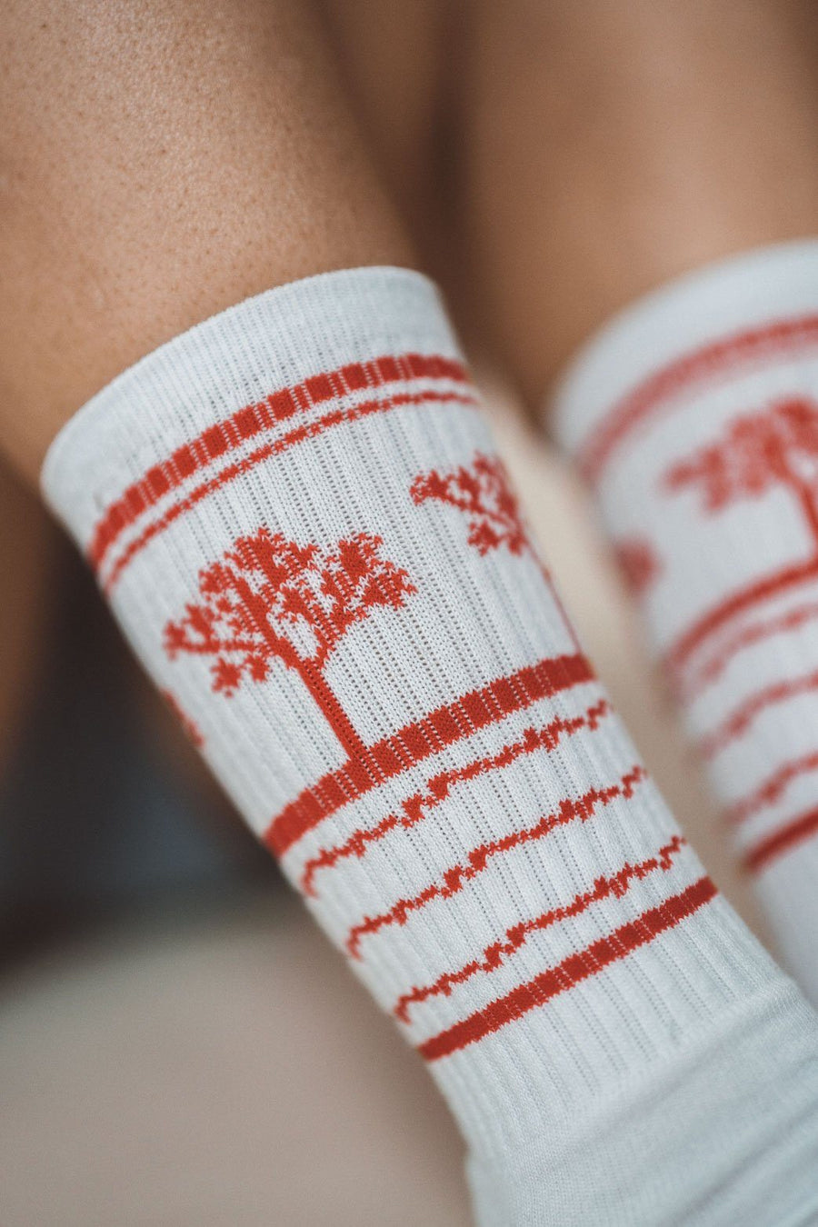 Joshua Tree Socks - Wondery, A Parks Apparel Brand