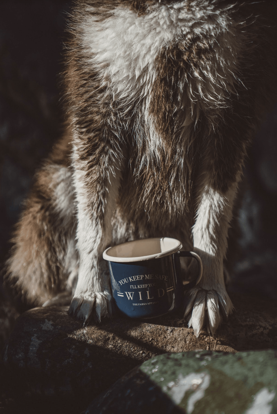Keep Me Safe Enamel Camp Mug - Wondery, A Parks Apparel Brand