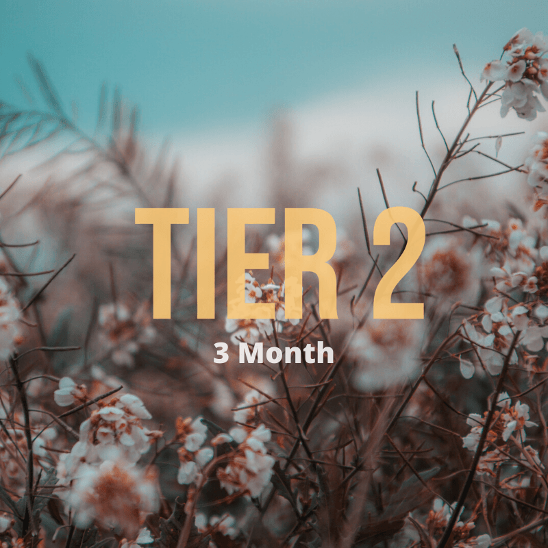 Tier 2 // 3 Month - Wondery, A Parks Apparel Brand