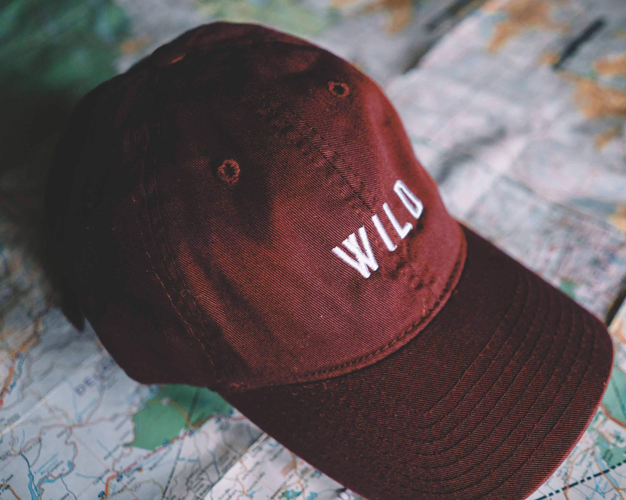 The Parks Wild Dad Hat - The Parks Apparel