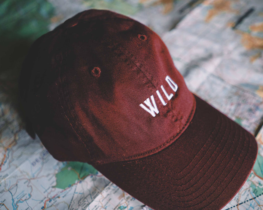 Classic Wild Dad Hat - Wondery, A Parks Apparel Brand