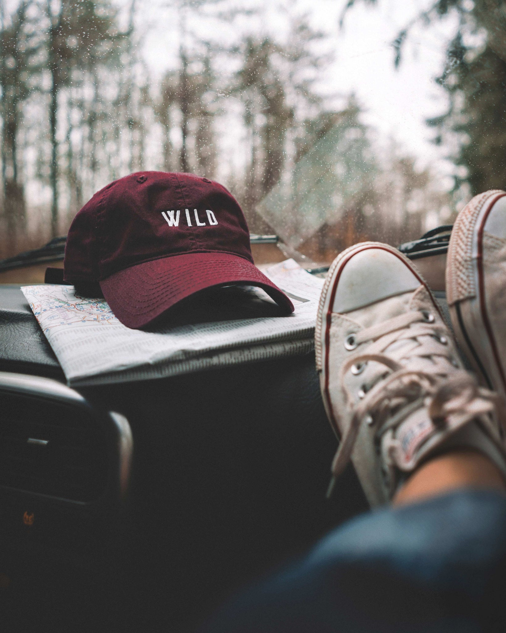 Classic Wild Dad Hat - The Parks Apparel