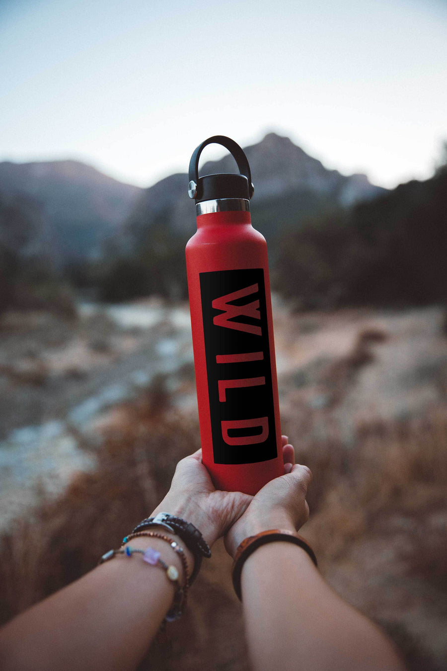 WILD Decal - Wondery, A Parks Apparel Brand