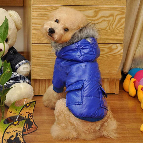 Cute Winter Pet Dog Clothes  Warm Hooded Jacket  Winter Polyester Coat Two Pocket Jacket