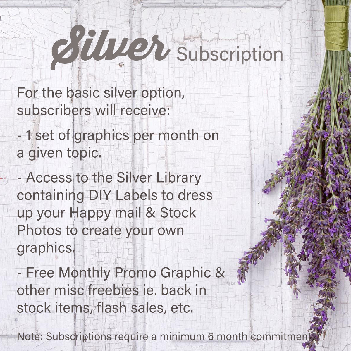 Basic Silver Subscription