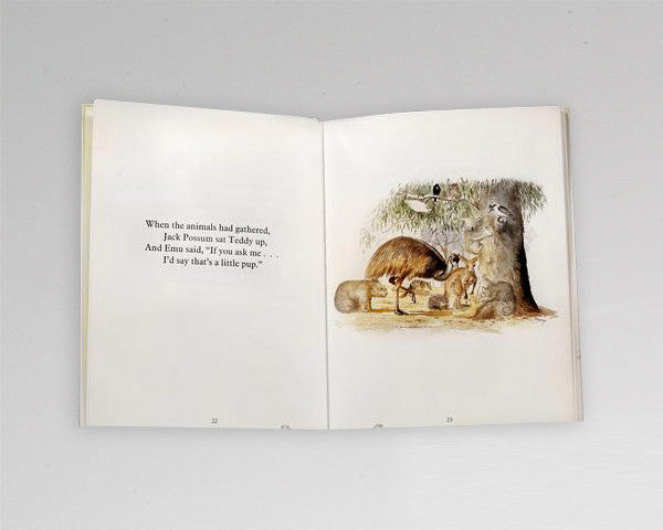 "Children's Book ""Teddy's Night Lost in the Bush"""