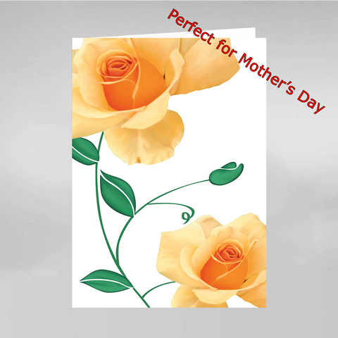 6 All Occasion Cards w/ Envelopes