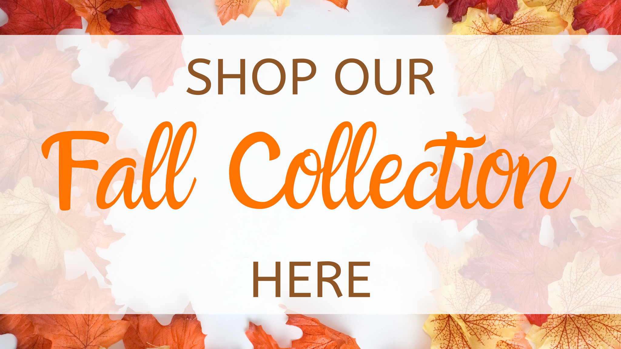 Shop Our Entire Fall Collection