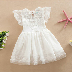 Mesh Embroidery Lace Dress, Toddler & Little Girls (2T-7)