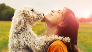 10 Easy Ways to Show Your Dog Affection