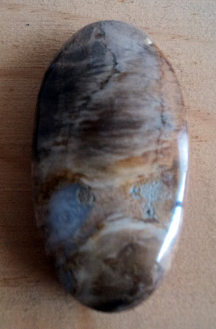 Fossil wood. Grooved pendant. PR005