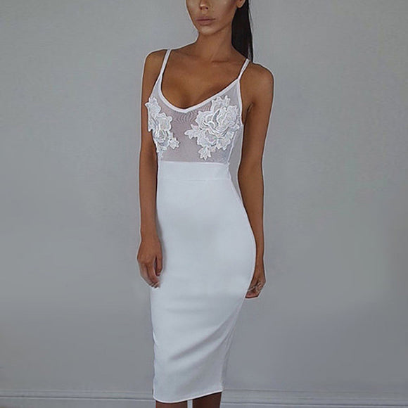 Dare me mesh bodycon dress