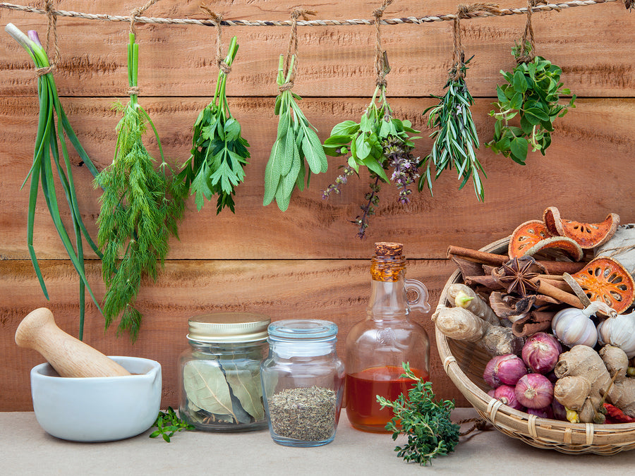 Holistic Health with Naturopathy Treatments