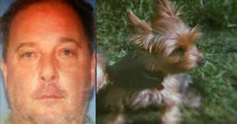 Rhode Island man sentenced to prison for beating Yorkie to death with cane