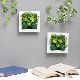 Green Ferns Wall Planter