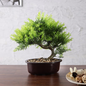 Faux Juniper Bonsai Plant