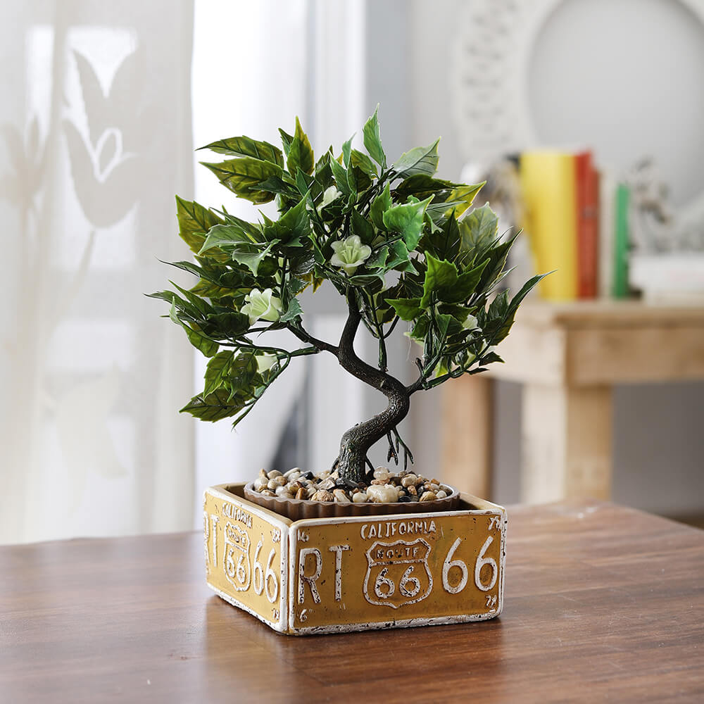 Bonsai Plant with Route66 Pot (white)
