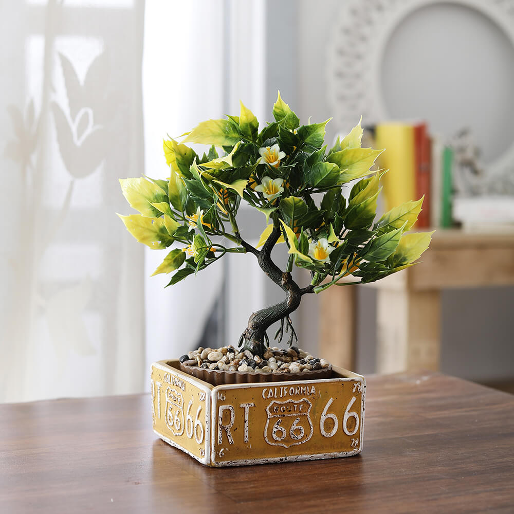 Bonsai Plant with Route66 Pot (yellow)