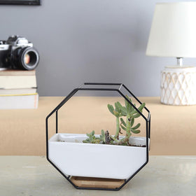 Octagon Wall Planter Pot