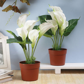 Set of 2 Faux Calla Lily Plants- White