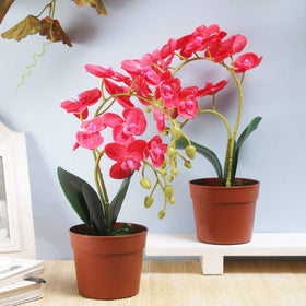 Set of Faux Phalaenopsis Orchid Pots-Dark Pink