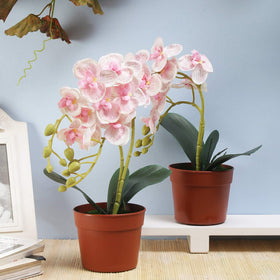 Set of Faux Phalaenopsis Orchid Pots-Light Pink