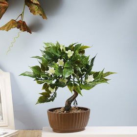 Gardenia Artificial Bonsai Tree- White