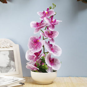Purple Vanda Orchid Flower Arrangement