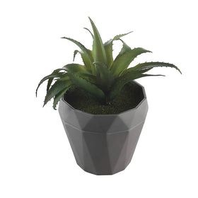 Set of Artificial Aloe Vera potted plants, Green