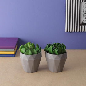 Set of Artificial Succulent potted plants, Green